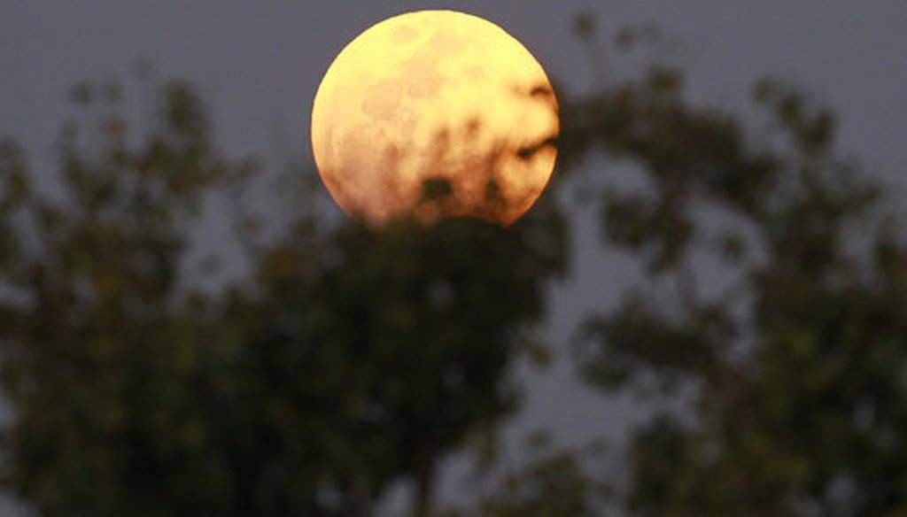 The moon rises behind the tree seen from Naypyitaw, Myanmar, Wednesday, Jan. 31, 2018. (AP Photo/Aung Shine Oo)