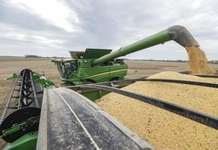 How bad off will soybean farmers be this year?