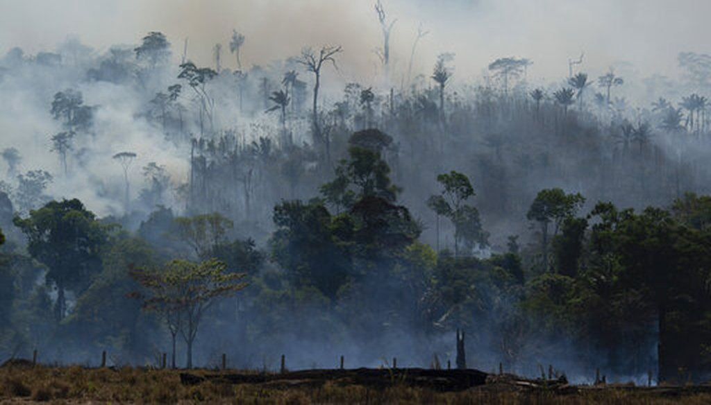 Fire consumes the Amazon rainforest in Altamira, Brazil, Tuesday, Aug. 27, 2019. (AP)