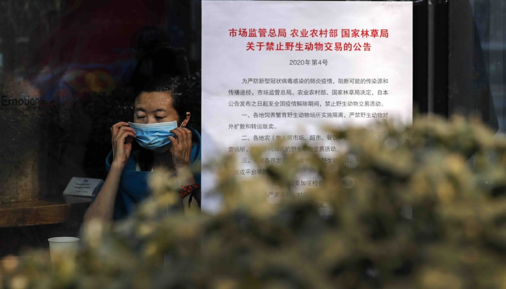 "A woman puts on a mask near a notice board that reads ""Bans on wild animals trading following the coronavirus outbreak"" at a cafe in Beijing on Feb. 10, 2020."