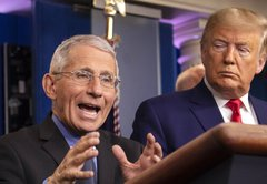Can Donald Trump fire Anthony Fauci?