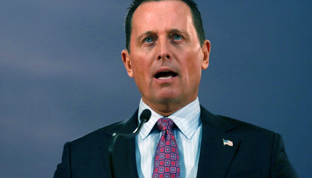 Richard Grenell speaks in Belgrade, Serbia, on Jan. 24, 2020. He was later tapped as acting director of national intelligence. (AP)