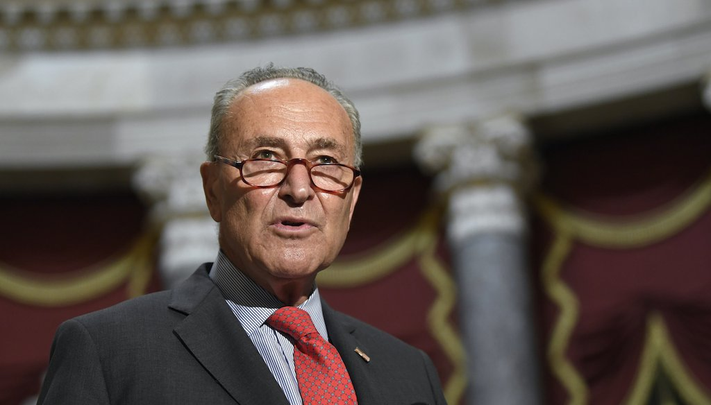 Senate Minority Leader Sen. Chuck Schumer of N.Y., speaks to reporters on Capitol Hill in Washington, Aug. 3, 2020. (AP/Susan Walsh)