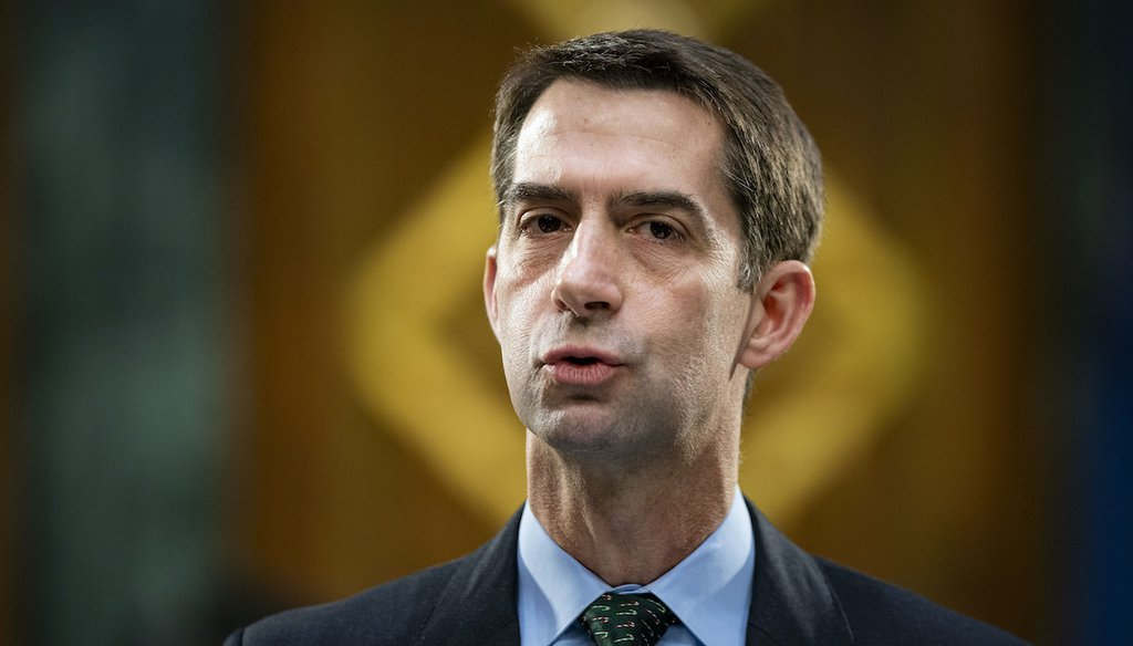 Sen. Tom Cotton, R-Ark., speaks during a Senate Banking Committee hearing on Capitol Hill, Dec. 1, 2020. (AP)