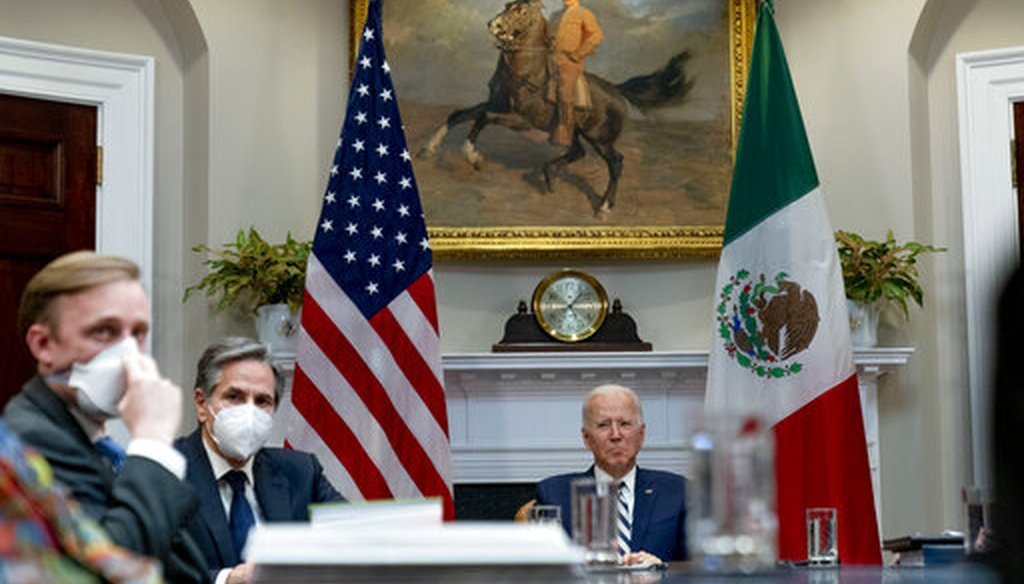 President Joe Biden appears at a virtual meeting with Mexican President Andres Manuel Lopez Obrador on March 1, 2021. (AP)