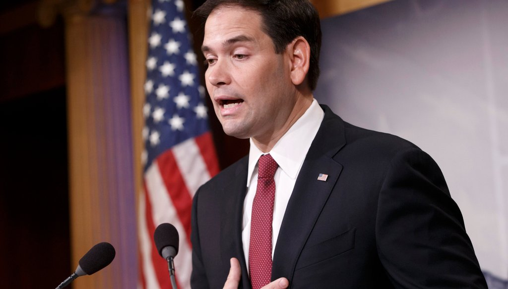 "Sen. Marco Rubio, R-Fla., released a new book, ""American Dreams,"" on Tuesday, Jan. 13."