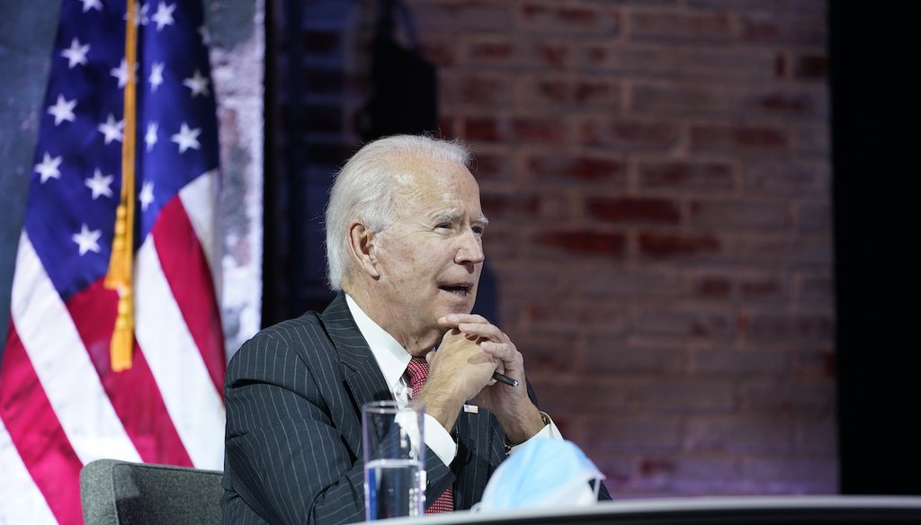 President-elect Joe Biden participates in a meeting with the National Governors Association's executive committee Nov. 19, 2020, in Wilmington, Del. (AP)