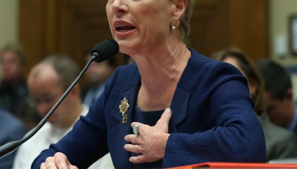 Cecile Richards, president of the Planned Parenthood Federation of America Inc., testifies during a House Oversight and Government Reform Committee hearing on Sept. 29, 2015. (Mark Wilson/Getty Images)