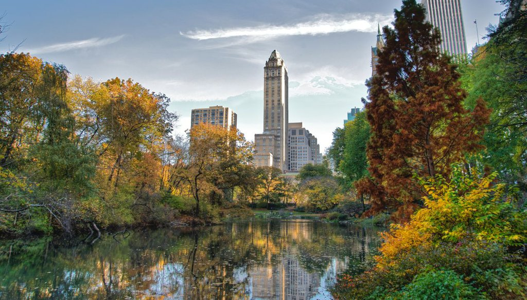 A portion of Central Park in 2009 (Ed Yourdon via Creative Commons)