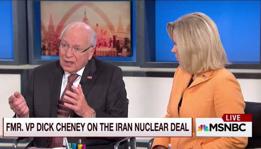 Former Vice President Dick Cheney talks about the Iran nuclear deal and the Nuclear Non-proliferation Treaty. (Screenshot)
