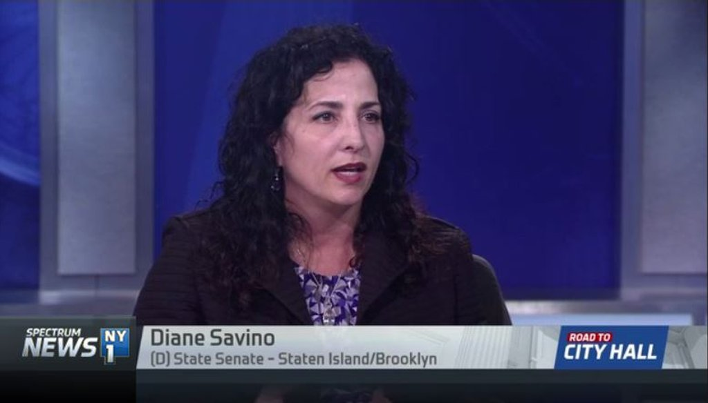 "State Senator Diane Savino claimed stipends in the chamber have gone to committee vice chairs ""for decades."" (NY1 Interview)"