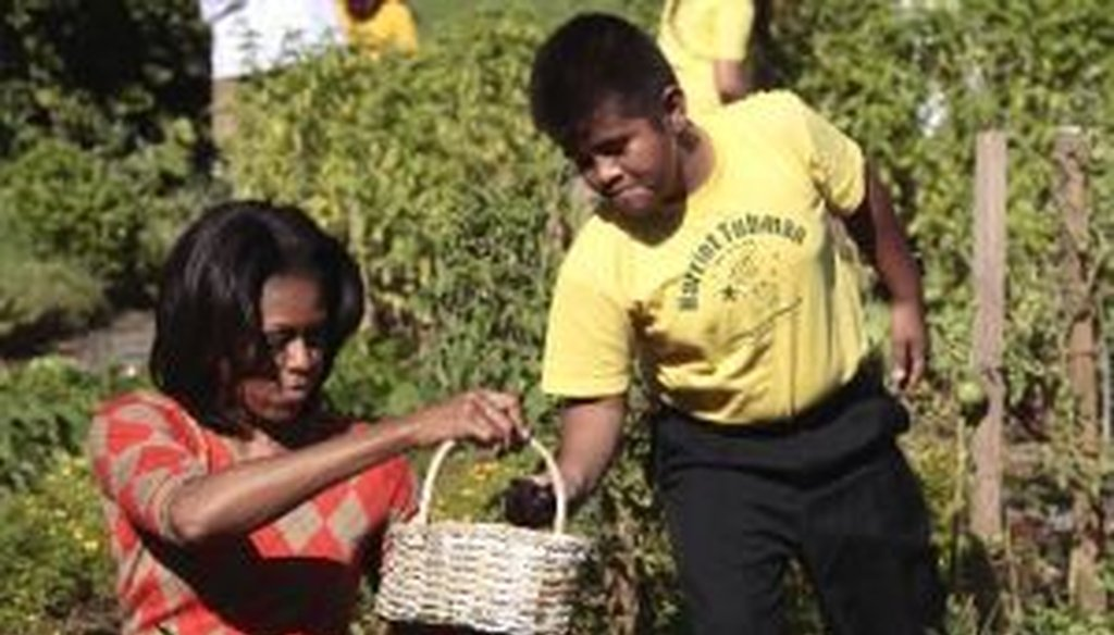 First Lady Michelle Obama recently published a book about her vegetable garden at the White House. However, she gave an incorrect statistic in an interview with NPR about the book.
