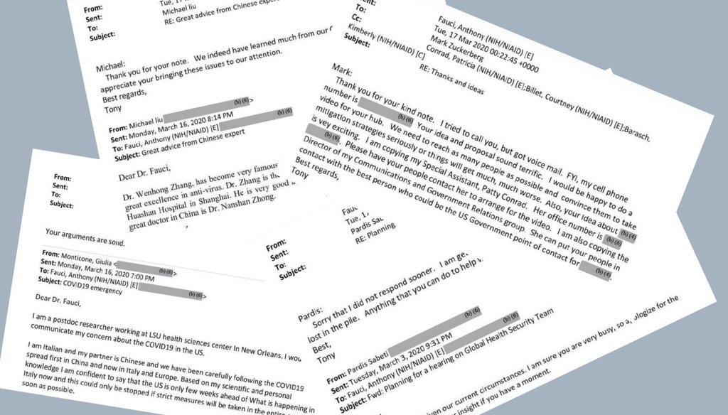 The release of hundreds of Dr. Anthony Fauci's emails reveals the quiet side of dealing with the pandemic. (Screenshot montage)