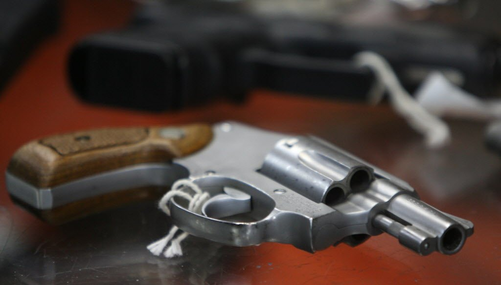 The proposed law would require individuals served with domestic-violence temporary protection orders to temporarily surrender their firearms to local law enforcement within 24 hours or to sell their firearms to a licensed dealer.