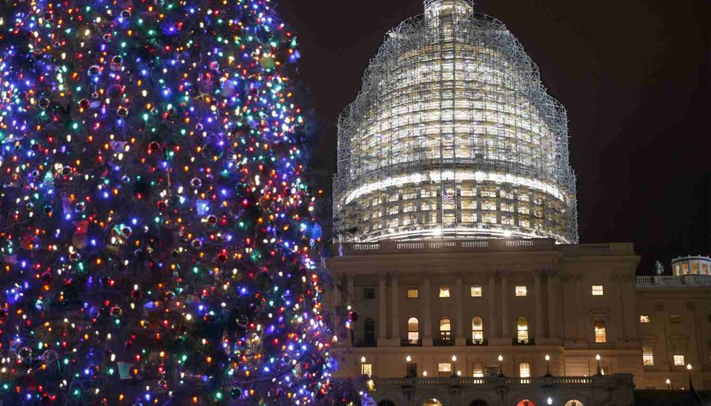 The Capitol Dome and the Capitol Christmas Tree are illuminated on Dec. 11, 2014. (AP Photo)