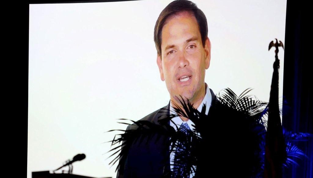 GOP presidential contender Sen. Marco Rubio delivers remarks via teleconference during Florida Gov. Rick Scott's Economic Growth Summit on June 2, 2015 in Orlando. (Orlando Sentinel photo)