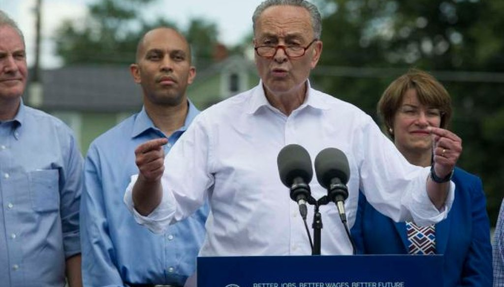 Senate Minority Leader Charles Schumer, D-N.Y., flanked by congressional Democrats, speaks in Berryville, Va., on July 24, 2017, to unveil a new agenda. (AP/Cliff Owen)