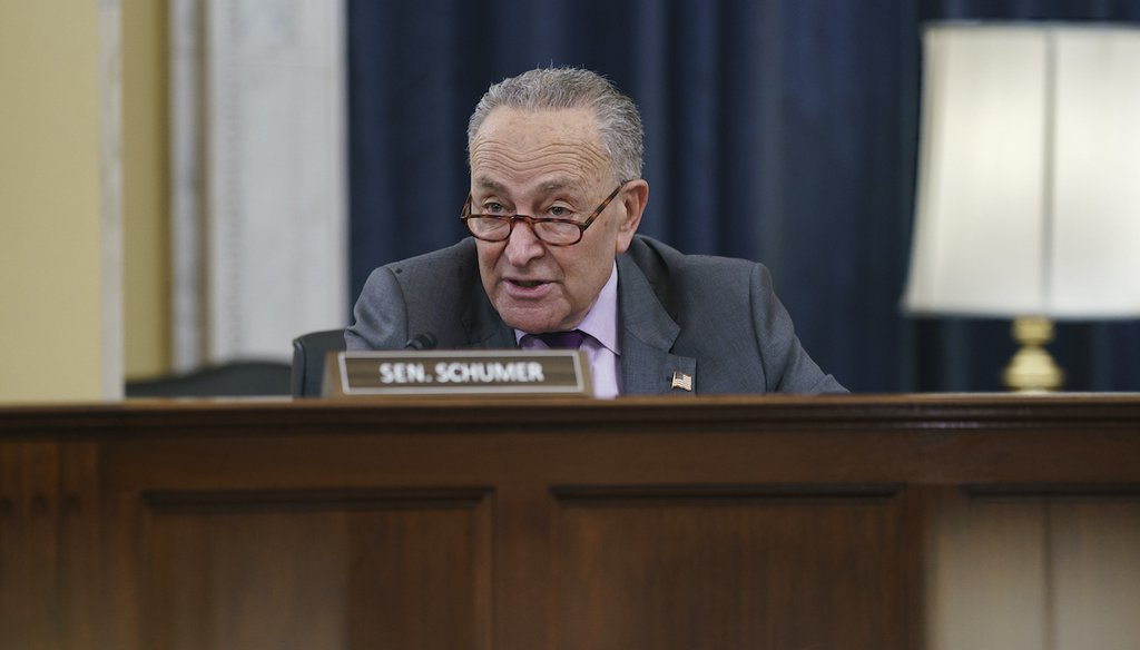 """Senate Majority Leader Chuck Schumer, D-N.Y., speaks as the Senate Rules Committee holds a hearing on the """"For the People Act,"""" which would expand access to voting and other voting reforms, at the Capitol in Washington, Wednesday, March 24, 2021. (AP)"""
