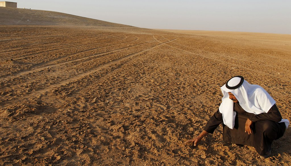 A man inspects parched fields in Raqqa province, Syria, in 2010. (Reuters Photo)
