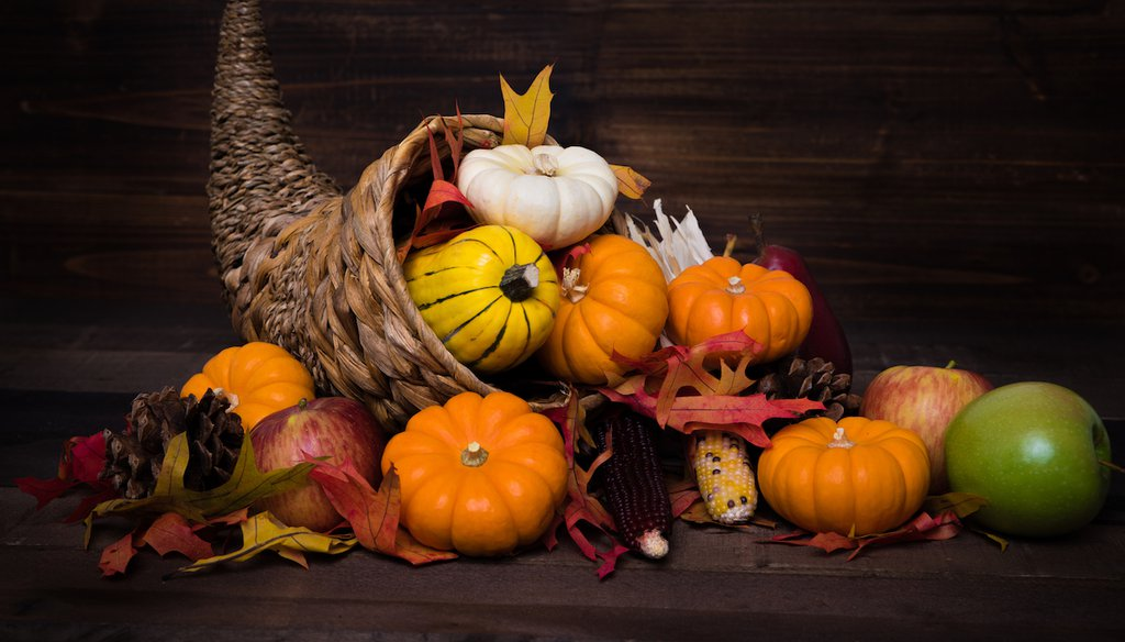 Happy Thanksgiving from PolitiFact. (Shutterstock)