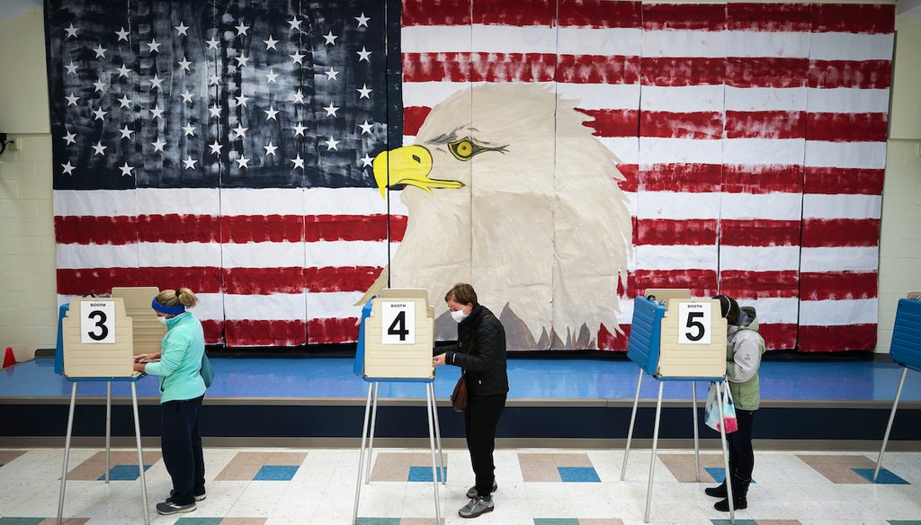 Voters cast their ballots under a giant mural at Robious Elementary school in Midlothian, Va., Tuesday Nov. 3, 2020. (AP)