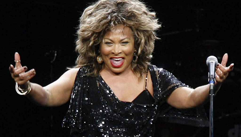 Singer Tina Turner performed in a concert in Cologne, Germany, on Jan. 14, 2009. (AP)