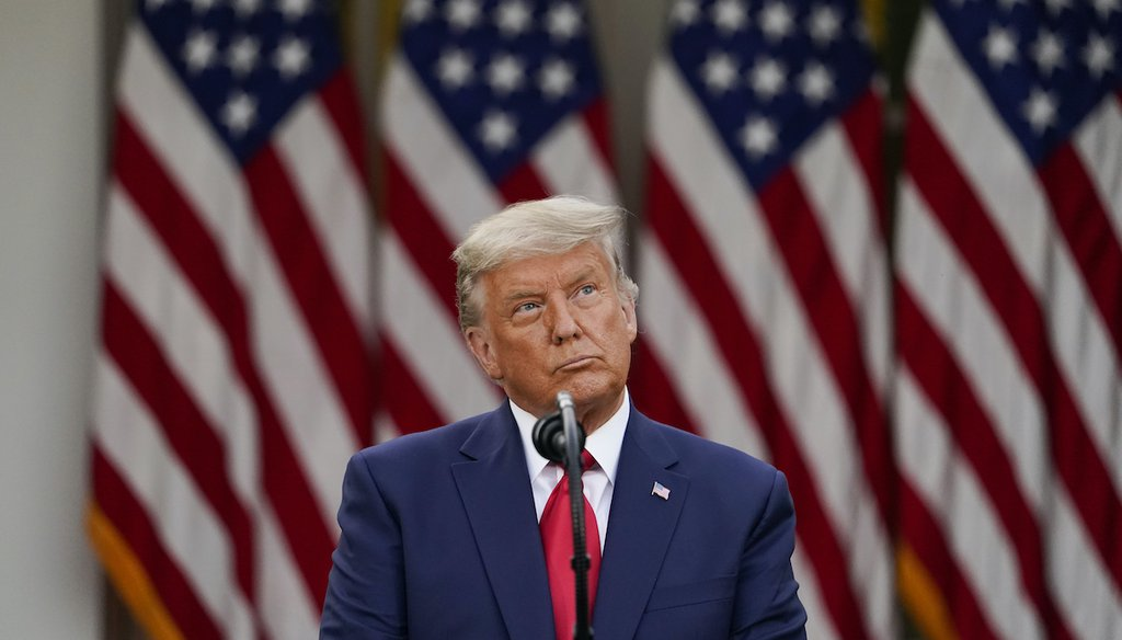 President Donald Trump speaks in the Rose Garden of the White House in Washington on Nov. 13, 2020. (AP/Vucci)