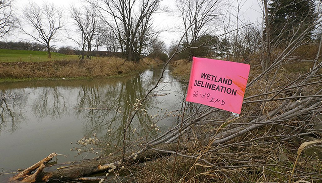 Legislation exempted Foxconn from some environmental requirements, allowing the company to fill in wetlands that are regulated by the state and change the course of streams. Mike De Sisti /Milwaukee Journal Sentinel