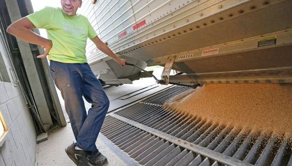 Dale Rahmlow, of Rahmlow Farms in Mishicot, Wis., unloads a truckload of soft red winter wheat from his truck. The value of total U.S. agricultural exports exceeds tens of billions of dollars per year. (Milwaukee Journal Sentinel/Mike De Sisti)
