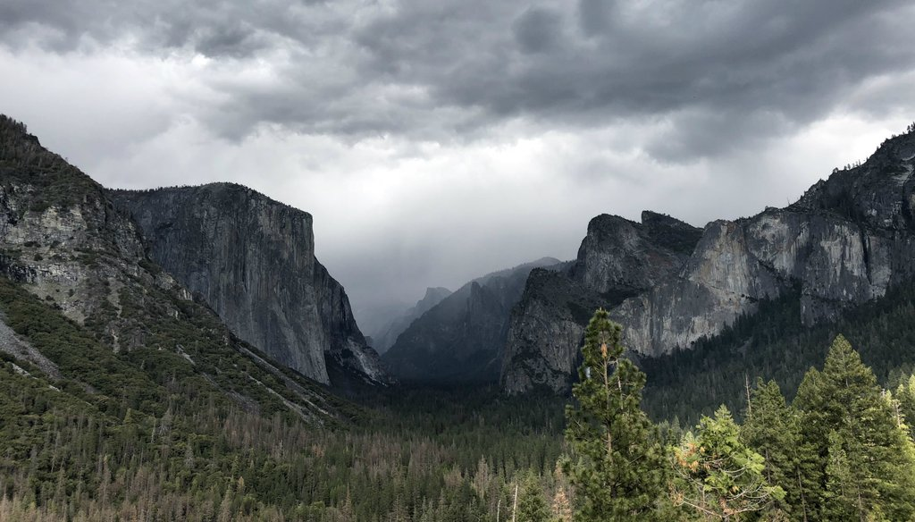 Yosemite National Park. Photo by Ezra David Romero / Capital Public Radio