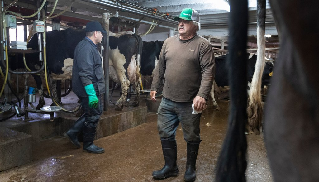 Roger Rueth, right, does his evening milking Wednesday, April 29, 2020 on his farm east of Loyal, Wis. (Photo by Mark Hoffman, Milwaukee Journal Sentinel)