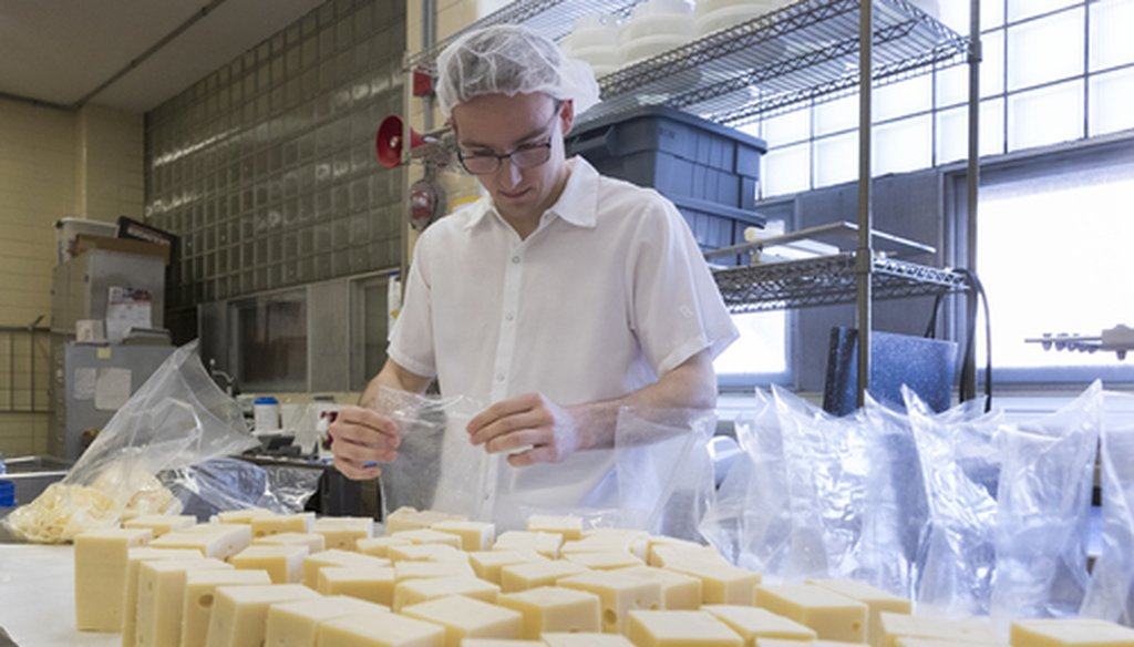 Student worker and food engineering major Tyler Rateike bags half pound blocks of baby Swiss cheese March 5, 2019 at Babcock Hall at UW-Madison in Madison, Wis. Gov. Tony Evers first work experience was working in cheese factories decades ago in Plymouth.