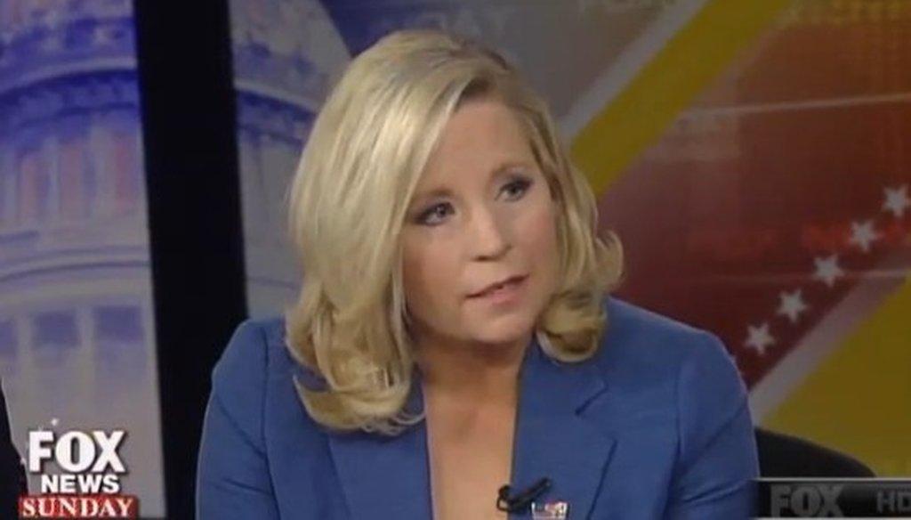 "Liz Cheney appeared on ""Fox News Sunday"" on April 6, 2014."