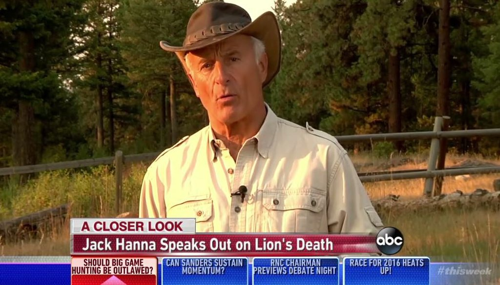 "Animal expert Jack Hanna discusses the death of Cecil the lion on ABC's ""This Week"" Aug. 2, 2015. (Screenshot)"