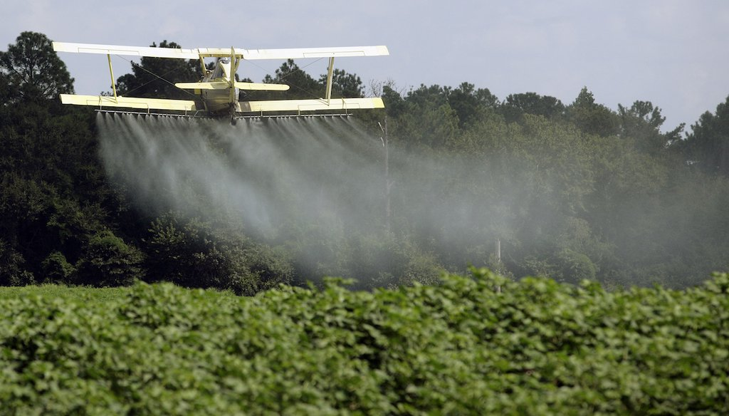 In this Aug. 4, 2009, file photo, a crop duster sprays a field of crops just outside Headland, Ala. (AP)