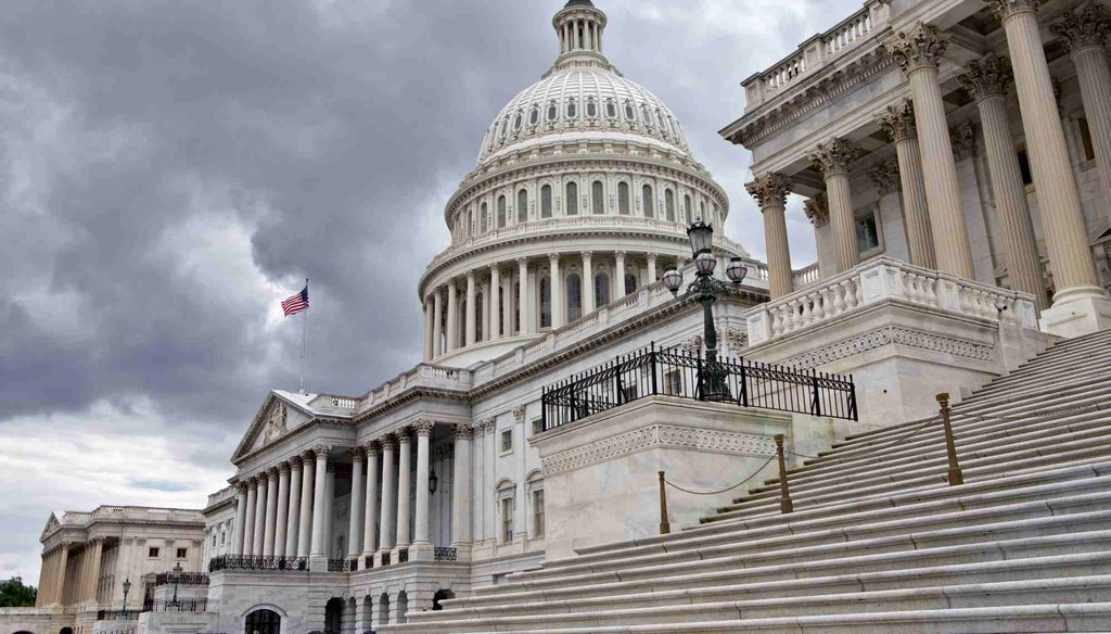 The U.S. Capitol in Washington. (AP file photo)