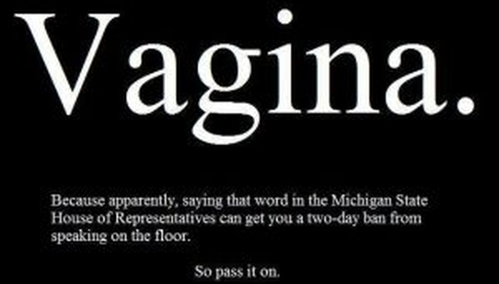 """This Facebook post popped up in the wake of Lisa Brown's """"vagina"""" remark in the Michigan state House."""