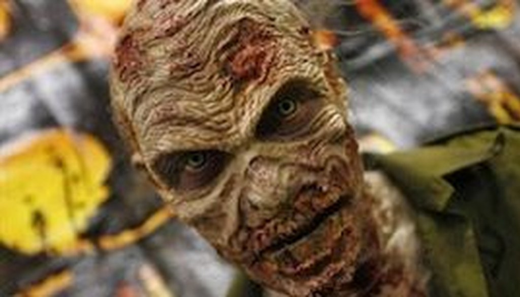 U.S. House of Representatives candidate Ed Lindsey says most voters prefers zombies like this one to members of Congress.