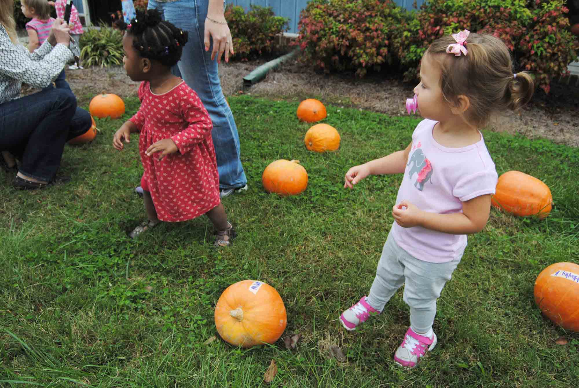 Children at Cathy Lee Development Childcare Center in Knightdale, NC, participate in a pumpkin patch. Photo by The News & Observer.