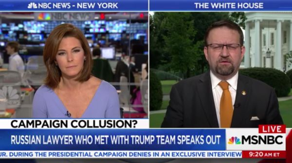 MSNBC's Stephanie Ruhle interviewed White House aide Sebastian Gorka on July 11, 2017.