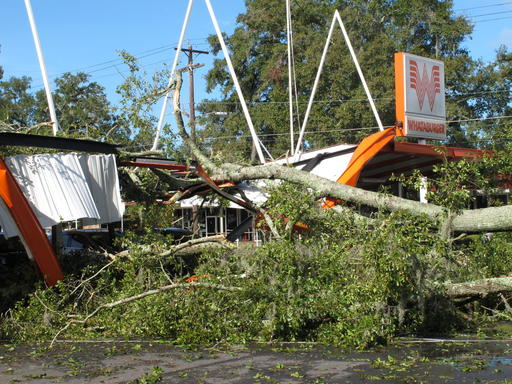 A large oak tree toppled over a Whataburger restaurant in Tallahassee, Fla., Sept. 2, 2016. Many businesses and homes in Tallahassee were without power and several roads were blocked due to tree damage caused by Hurricane Hermine. (AP)