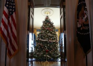 The official White House Christmas tree for 2012 stands in the Blue Room. (AP photo)