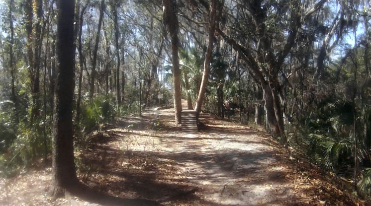 The bike trails at Alafia River State Park in Lithia are labeled to indicate easy, intermediate or difficult. (Tampa Bay Times)