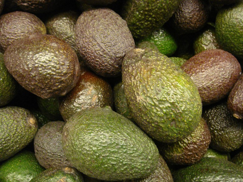 Holy Guacamole: Would America really 'run out of avocados