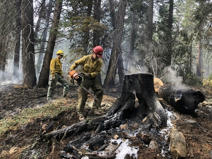 Crews work a prescribed burn earlier this year in the Tahoe National Forest, making sure hazard trees are cut down. It's a preventative measure taken to ensure the public's safety. Ezra David Romero / Capital Public Radio